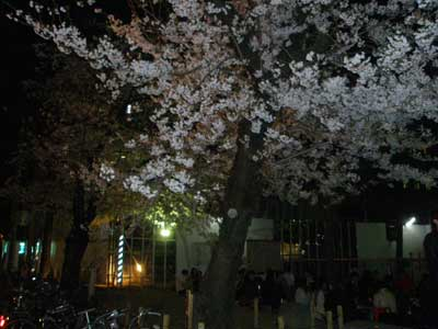 misayama3.jpg